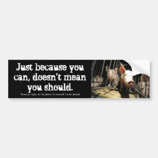 Just because you can, pigs bumper sticker