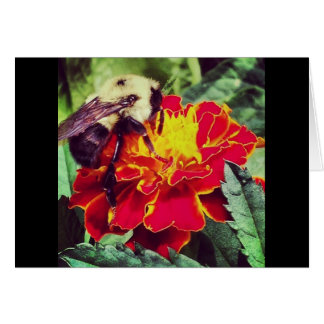 Just Bee-cause! Greeting Card