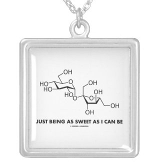 Just Being As Sweet As I Can Be (Sucrose Molecule) Personalized Necklace
