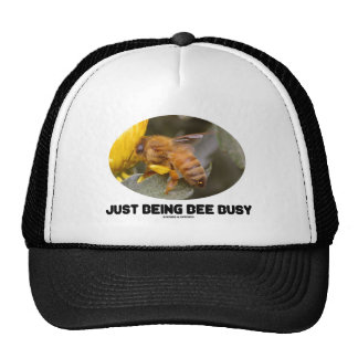 Just Being Bee Busy (Bee On Yellow Flower) Cap