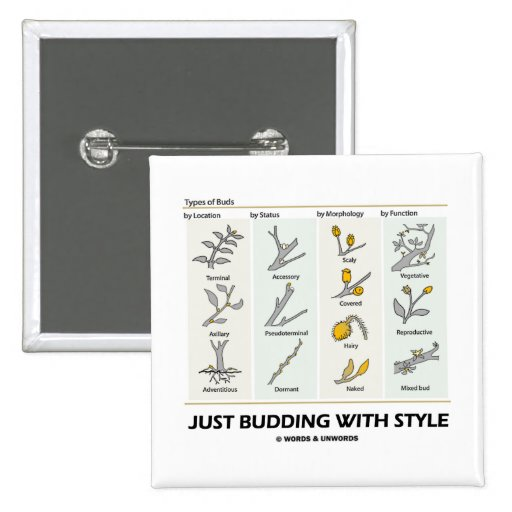 Just Budding With Style (Types Of Buds) Pinback Button