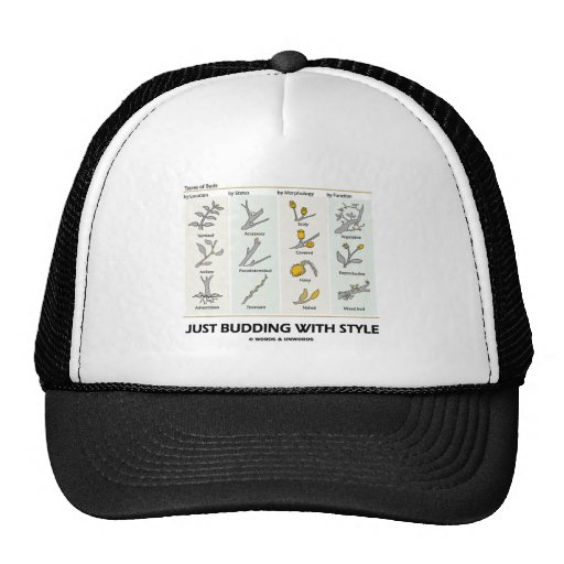Just Budding With Style (Types Of Buds) Hats
