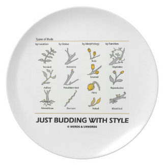 Just Budding With Style (Types Of Buds) Party Plates