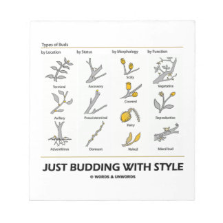 Just Budding With Style (Types Of Buds) Scratch Pad