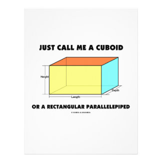 Just Call Me Cuboid Or Rectangular Parallelepiped 21.5 Cm X 28 Cm Flyer