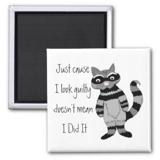 Just cause I look guilty... Magnets