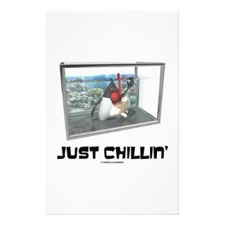 Just Chillin' (Java Duke Snorkeling Fish Tank) Stationery