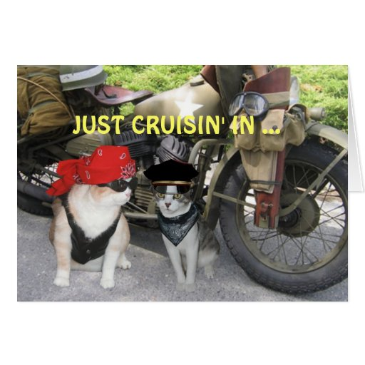 Just Cruisin' In Funny Birthday Greeting Cards