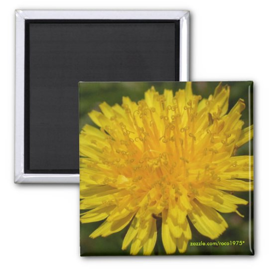 Just Dandy! Square Magnet