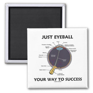 Just Eyeball Your Way To Success (Eye Anatomy) Magnets