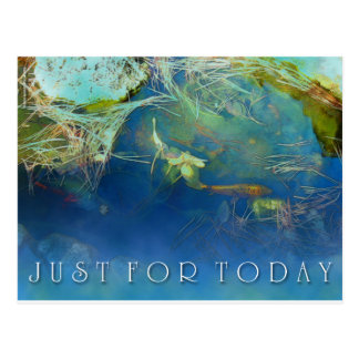 Just For Today Koi Pond Postcard