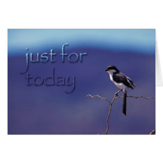 Just For Today, Recovery Bird Support Card