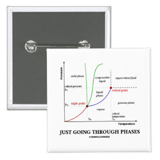 Just Going Through Phases (Chemistry Humor) 15 Cm Square Badge