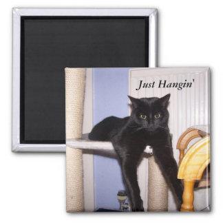 Just Hangin' Magnet