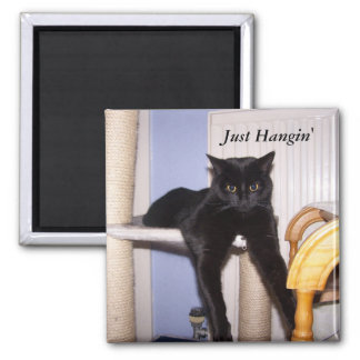 Just Hangin' Square Magnet