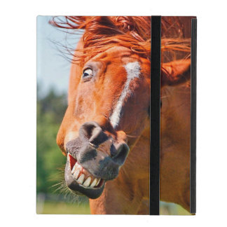 Just Horsing Around Horse Photograph iPad Folio Cover