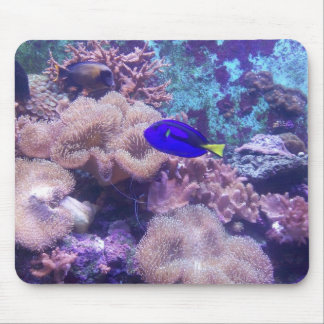 Just Keep Swimming Mouse Mat