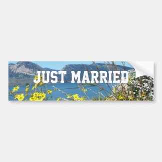 Just married flowers and lake, blue sky. bumper sticker