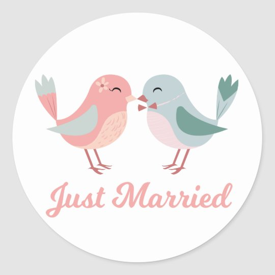 Just Married Pink & Blue Lovebirds Wedding Classic