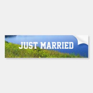 Just married wild nature Grand Teton Bumper Stickers