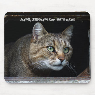 Just Mousing Around Cat Mouse Mat