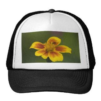 just myself cap