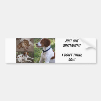 Just ONE Brittany I don t think so Bumper Stickers