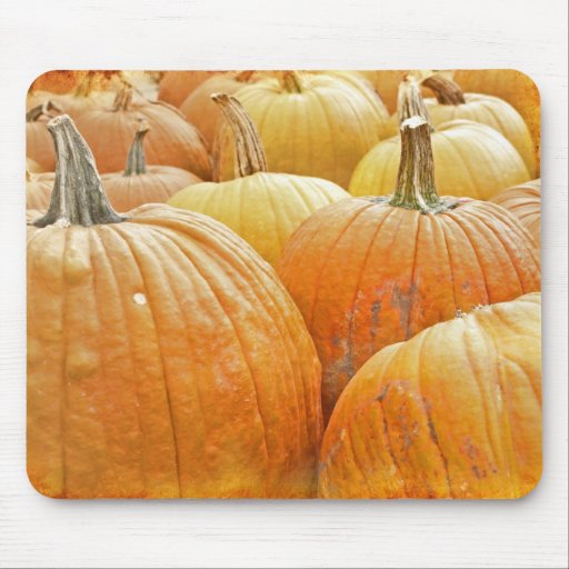 Just Pumpkins in the patch! Mousepad