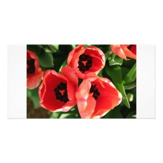 Just Rosy Custom Photo Card