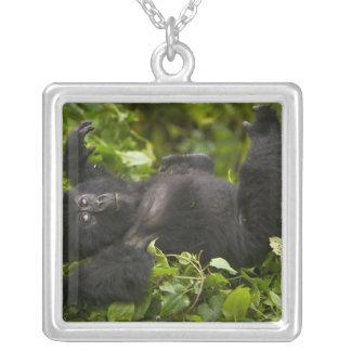 Juvenile Mountain Gorilla 2 Silver Plated Necklace