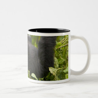 Juvenile Mountain Gorilla 2 Two-Tone Coffee Mug