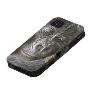 Juvenile Mountain Gorilla 4 Case For The iPhone 4