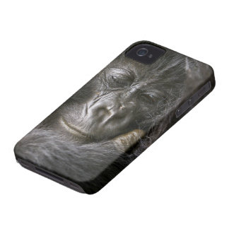 Juvenile Mountain Gorilla 4 iPhone 4 Cover