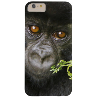 Juvenile Mountain Gorilla Barely There iPhone 6 Plus Case