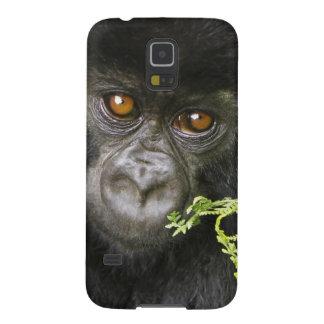 Juvenile Mountain Gorilla Cases For Galaxy S5