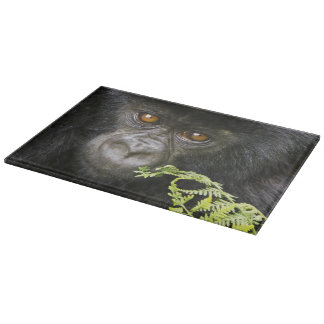 Juvenile Mountain Gorilla Cutting Board