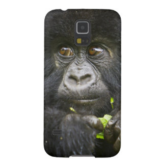 Juvenile Mountain Gorilla feeds on tender leaves 2 Cases For Galaxy S5