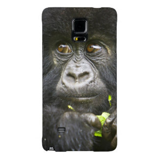 Juvenile Mountain Gorilla feeds on tender leaves 2 Galaxy Note 4 Case