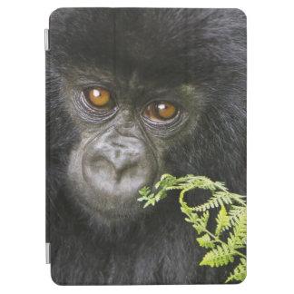 Juvenile Mountain Gorilla iPad Air Cover