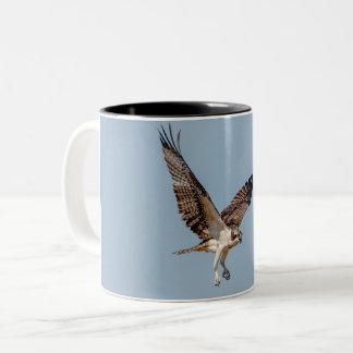 Juvenile Osprey in flight Two-Tone Coffee Mug
