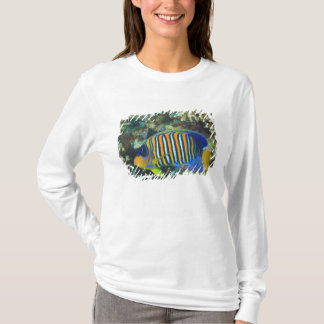 Juvenile Regal Angelfish Pygoplites T-Shirt