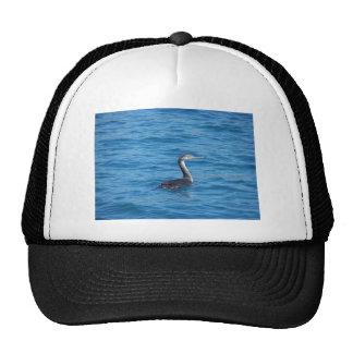 Juvenile Shag fishing Hat