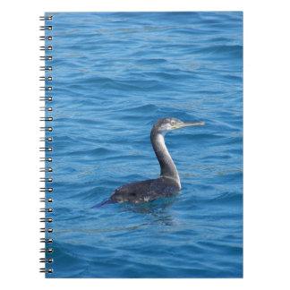 Juvenile Shag fishing Note Books