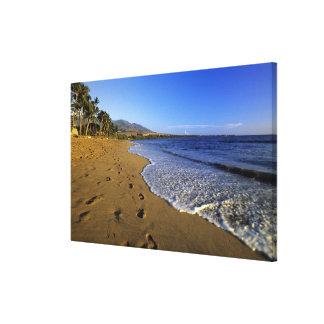 Kaanapali beach, Maui, Hawaii, USA Canvas Print