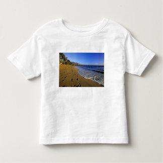 Kaanapali beach, Maui, Hawaii, USA Toddler T-Shirt