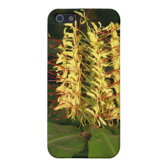 Kahili ginger iPhone 5 cases