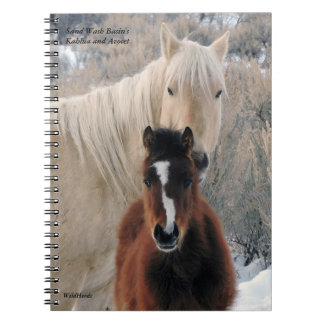 Kahlua and Avocet from Sand Wash Basin Spiral Note Books