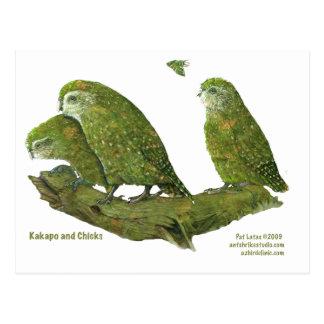 kakapo and chicks postcard