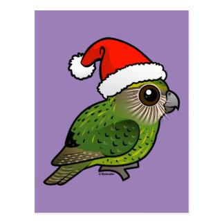 Kakapo Claus Postcard