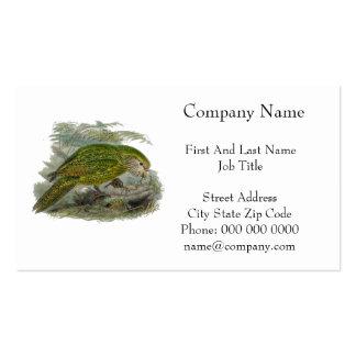 Kakapo Green Parrot Vintage Illustration Pack Of Standard Business Cards